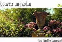 Videos _ Jardin Agapanthe