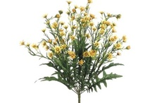 Daisy Collection ~~ by http://e-silkflowerdepot.com/ / Largest online selection of artificial floral supply for your floral arrangement needs.(TEL:1-800-444-2920) http://www.e-silkflowerdepot.com