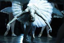 Ballet / by Tara MD