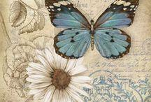 Papier papillon bleu ecriture