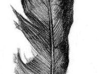 Tattdeas. Get it? Tatt-deas. Nvm. / My ponderings of permanent ink. / by Shane Meyer
