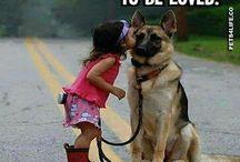 DOG-MINE..!!