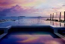 Centara Grand Resort / Maldivler Centara Grand Island Resort & Spa benzersiz bir 5 yıldızlı resort deneyimi sunuyor. Gözlerden uzak bir konumda yer alan bu ada tesisi, sahilde veya su üzerinde inşa edilmiş, muhteşem deniz manzaralı lüks konaklama birimleri sunmaktadır. Heyecan verici bir dizi etkinlik ile birlikte hem çiftlere hemde ailelere hitap ediyor... Tesis hakkında daha detaylı bilgi için; http://www.maldiveclub.com/maldivler-otelleri/centara-grand-resort