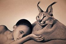 Human & Animals ~ The Song of the Soul / Wild Animals and Human
