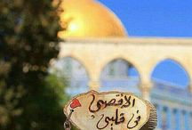 save palestina
