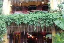 Holiday- Vietnam