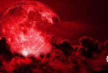 Astrology, Tarot, and Metaphysics