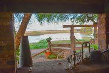Balranald, NSW / Beautiful town on the banks of the Murrumbidgee river