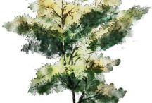 tatovere sæ et træ