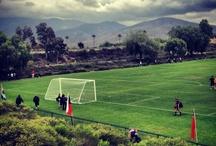 sportvelden / verschillende sport velden