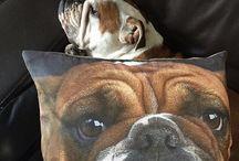 Cushions / Cushions that catch our eye