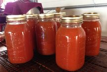 Canning, Preserving, Freezing Etc. / by Amy Lake