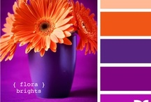 Color me pretty