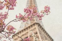 Dream Trip: Paris