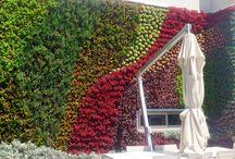 Green wall book garden