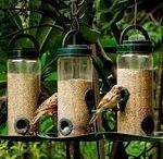 Love for birds! / by Neelofer Khan