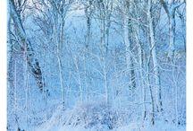 Winter, zima