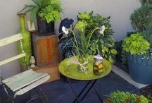 Tiny patio, big ambitions / by Hala .