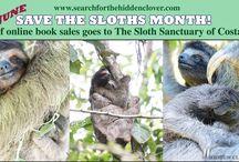 Sloths / by Sara Yzaguirre
