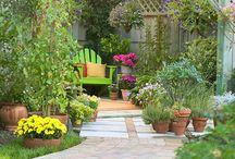 garden / by Lindsey Broussard