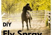 horses natural sprays