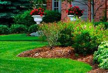 Lawn Care / Lawn care is not just about looks. A healthy lawn is important to the greater environment.