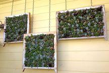 gardens / Beautiful, natural gardens and eco gardening ideas