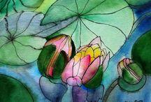 Plants - Lotus/Waterlily