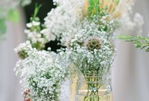 Flowers/Centerpieces / by Emily Richardson