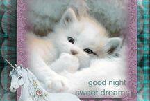 Jó éjszakát