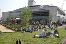 Green Roof Landscapes / Intensive and extensive green roofs, including roof gardens over podium decks.