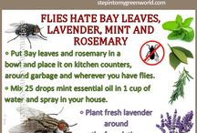 Fly Repellents