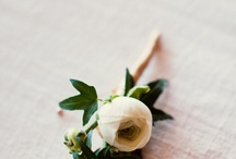Rose, I love it ^_^ / by ℳiền Tây ℳUA ♥ レ O √ 乇
