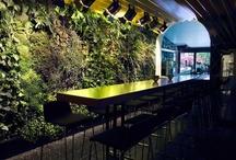 vertical gardens / by Christina Terres