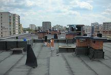 Dekarze, dachy