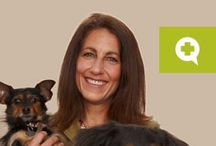 Veterinary News, Services & Interests