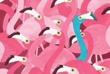DESIGN :: Flamencos / flamingos
