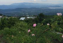 Εβορα !! / Η θέα απο την Εβορα,το μαγευτικό περιβάλλον και το πράσινο που συναρπάζει !!!