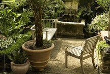 Ideas for our Private Mini garden off of master bath. / Visions of a secret garden. / by Carol G