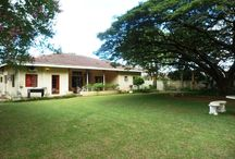 Jenny's Bed & Breakfast / Jennys B&B is a lovely home-away-from-home situated in Melmoth, in the heart of KwaZulu-Natal.   http://www.go2global.co.za/listing.php?id=888&name=Jenny%27s+Bed+%26+Breakfast