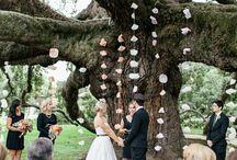Cérémonie de Mariage - Wedding Ceremony