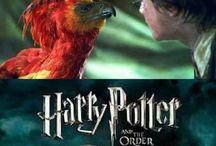 Harry Potter stuff.