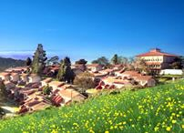 Hotels / List of Hotels in OOty