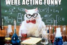 science/school jokes