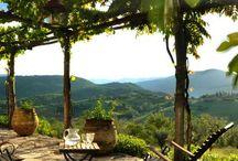 Country Tuscan backyard