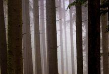 peisaj si natura by gabrielphotography