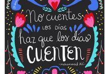 Frases proyecto