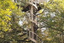 Treehouse dreamin'