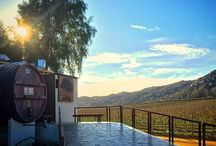 Baja Wine Country