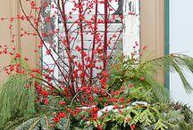 Christmas / by Ann Goble